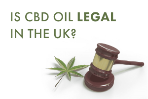 Dragonfly CBD Is CBD Oil Legal in the UK