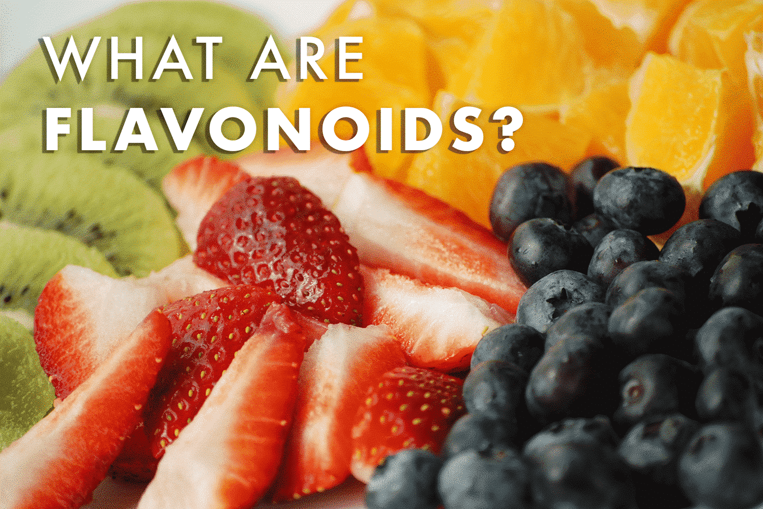 What are flavonoids blog