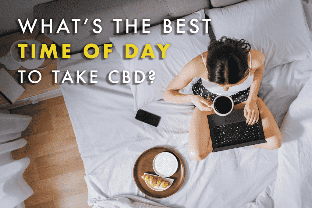 The best time of day to take cbd. What's the best time to take cbd- Young Millennial Girl Sitting on a Bed in the Morning, Uses Laptop Computer and Eats Croissants and Drinks Coffee for Breakfast. Top Down Shot.