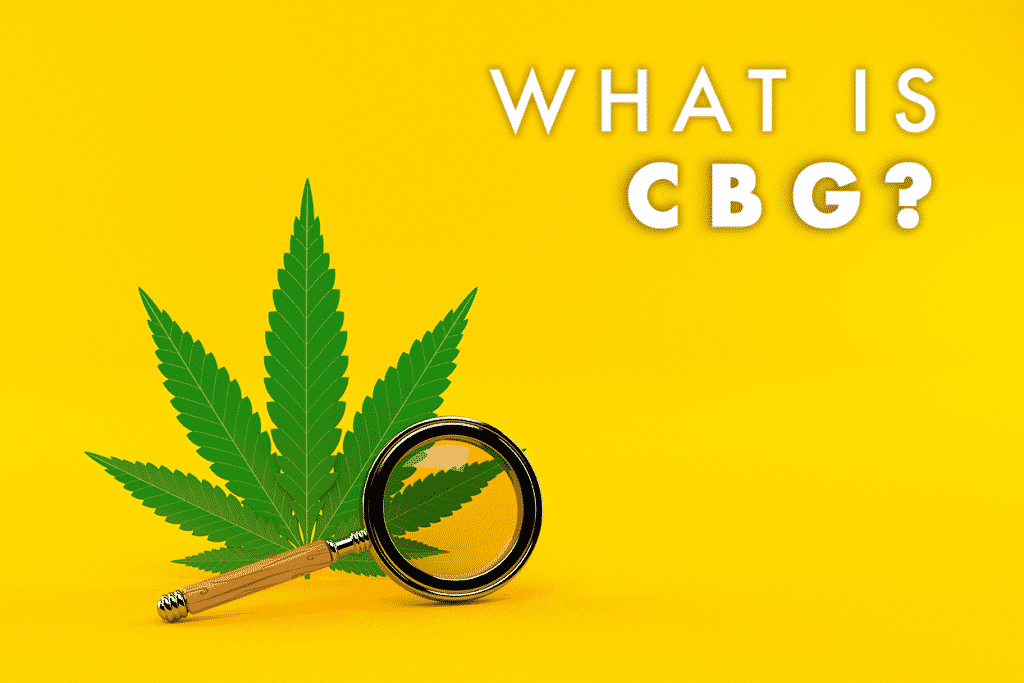 what is cbg? image of cannabis leaf with magnifying glass next to it on a yellow background