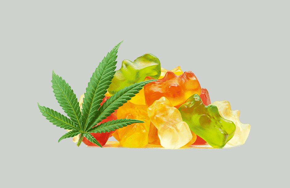 A pile of gummy bears made with cannabis extract next to a hemp leaf. These medical cannabis edibles contain CBD- low bioavailability