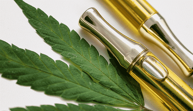 Full gram cartridges with cannabis oil and terpenes inside. With weed leaf on white background. An alternative method of smoking medical marijuana.
