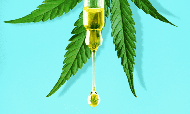 Dragonfly CBD Is CBD Oil Legal in the UK Cover